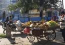भारतबाट आईरहेको फलफुल र तरकारीका गाडीले कोरोनाको जोखिम बढाउंदै